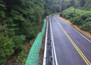 ACDPW-project-profile-road